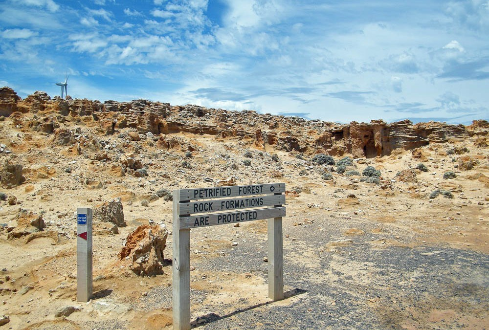 Petrified Forest, Cape Bridgewater